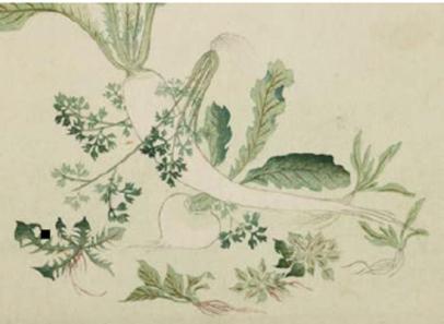 museoguimetentete-surimono